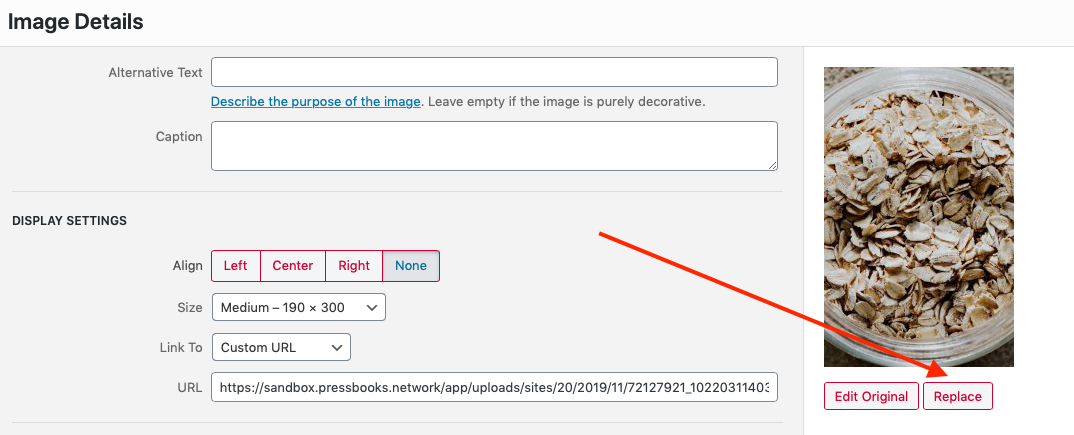 """The """"Replace"""" button on the Image Details window"""