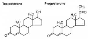 Testosterone and Progesterone images for examples