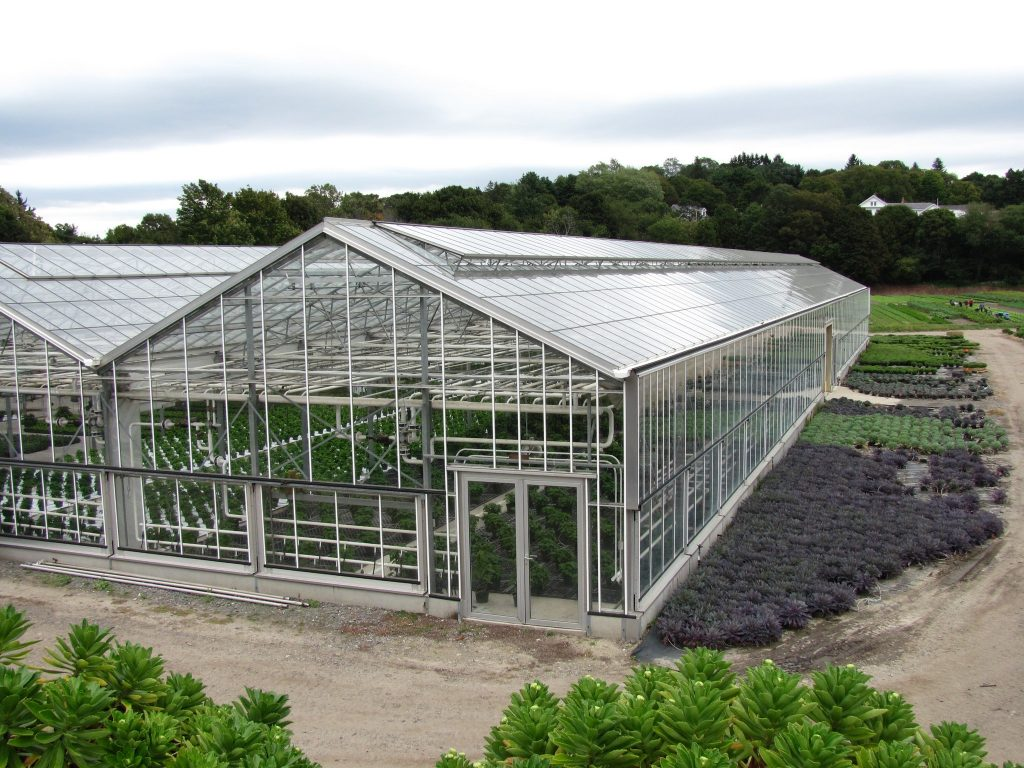 Greenhouse where plants are grown