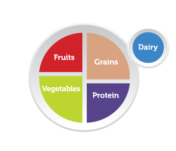 """Infographic showing a picture of a plate divided into four segments: One segment is labeled """"Fruits,"""" one is labeled """"Grains,"""" one is labeled """"Protein,"""" and the last is labeled """"Vegetables."""" Next to the plate is a circle (suggesting a cup or glass) that's labeled """"Dairy."""""""